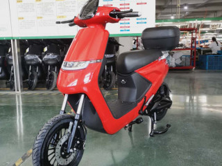 Luyuan electric scooters wholesaler supplier 25km/h in Europe