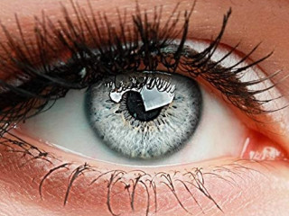 colored contact lenses, 3 - monthly lenses, INTENSE ICE GRAY LIGHT GRAY